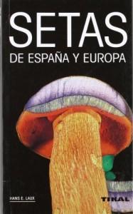 Setas-de-Espaa-y-Europa-0