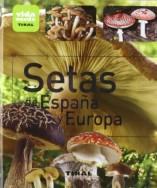Setas-de-Espaa-y-Europa-Vida-verde-0