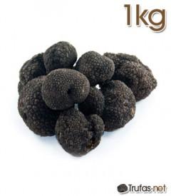 compra trufa negra 1 kg