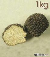 trufa-verano-1-kilo
