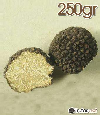 Trufa de Verano 250 gr 4
